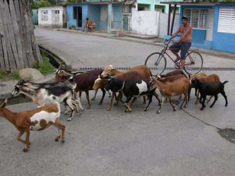 Куба, Баракоа