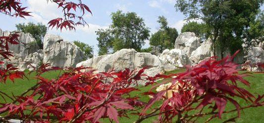 Китай. Шилин, лес камней