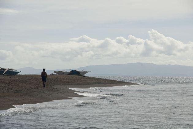 Дайвинг на Филиппинах, Дауин, остров Негрос