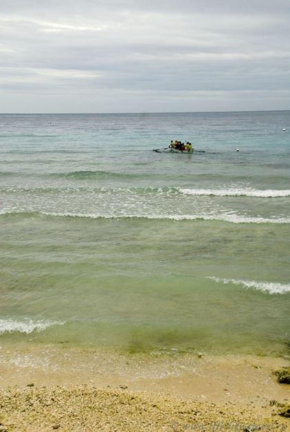Плавание с китовыми акулами, Ослоб, остров Себу, Филиппины