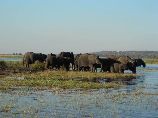 Один день из жизни в Африке