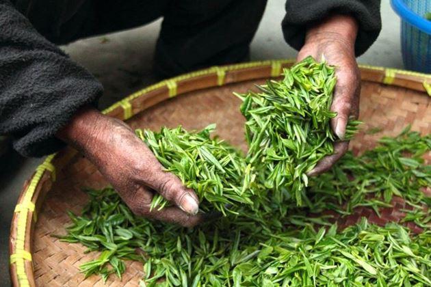 Чай Малайзия