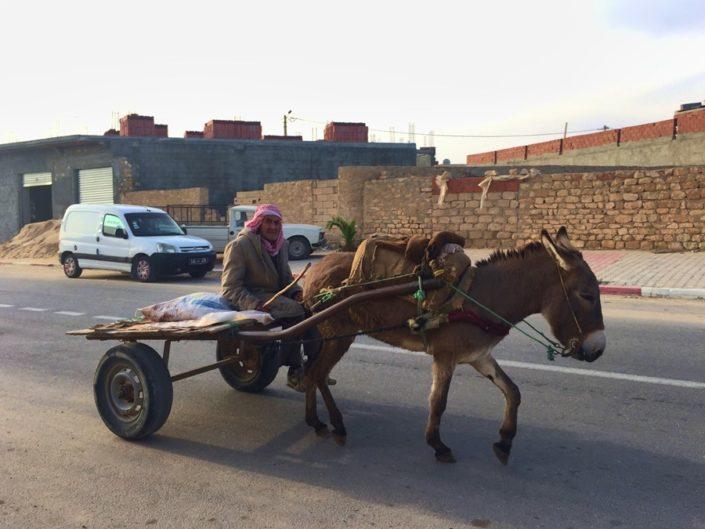 Повозка, Тунис