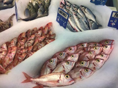 Рыба, Тунис