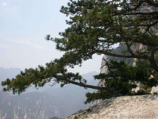 Китай. Желтые горы Хуашань. Ребра Дракона