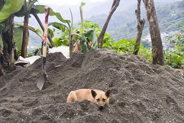 Филиппины, Банауэ, провинция Ифугао, поработал...