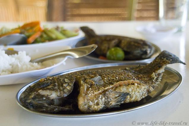 Филиппины, Талисай, обед с видом на Тааль