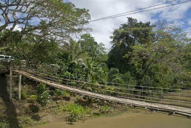 Филиппины, остров Бохол, Подвесные бамбуковые мосты в Севилле