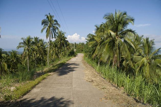 Дорога к озерам-близнецам, окрестности Думагете, остров Негрос, Филиппины