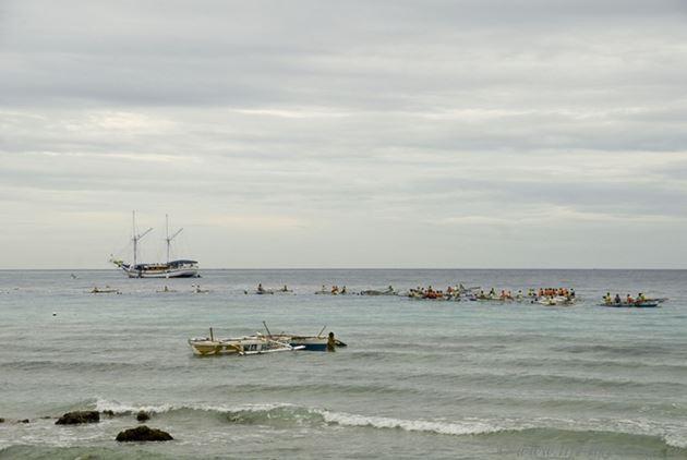 Плавание с китовыми акулами на Филиппинах, Ослоб-Танаван, остров Себу