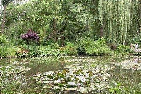Как попасть в Живерни: дом и пруд с кувшинками Клода Моне, неделя в Париже — все главные достопримечательности, чем заняться, куда пойти, что посмотреть