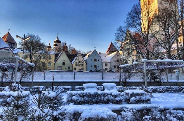 Путеводитель по Таллину: что посмотреть в Таллине за 1-2 дня, маршруты, достопримечательности, цены, кухня, окрестности Таллина