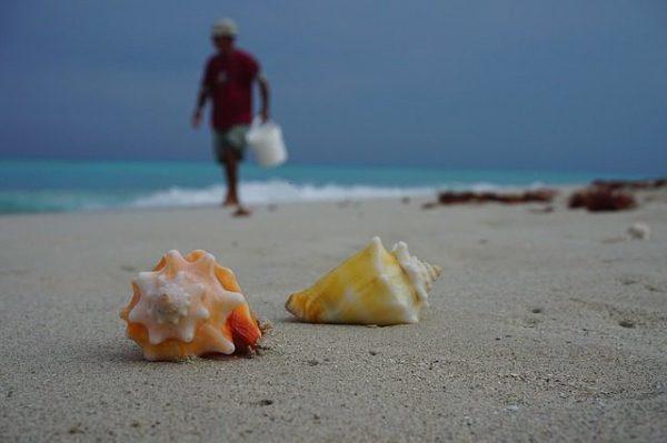 Дайвинг на Кубе, Хувентуд