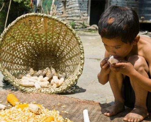 Чомронг, Непал, Гималаи, трек к базовому лагерю Аннапурны ABC