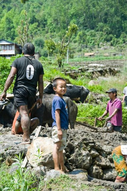 Синуа, Непал, Гималаи, трек к базовому лагерю Аннапурны ABC
