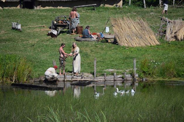 музей викингов дания