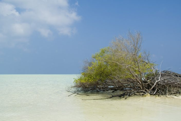 Мальдивы экскурсия по островам на самолетике