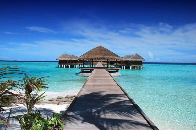 Путеводитель по Мальдивам: сколько стоит отдых на Мальдивах и может ли он быть дешевым, отзывы, фото, цены, дайвинг, на чем сэкономить на Мальдивах