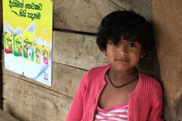 Все самые популярные способы обмана на Шри-Ланке: практические советы как избежать обмана, безопасность на Шри-Ланке, улыбки и разводняк по-ланкийски