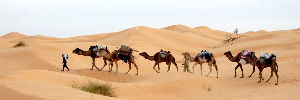 Пустыня Сахара, Тунис