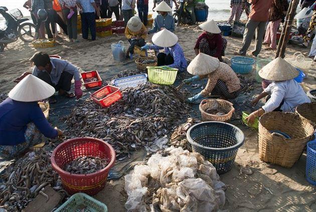 Фото Муйне Вьетнам